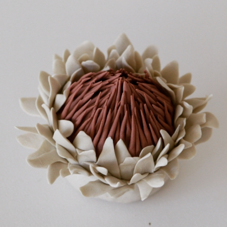 Holly OMeehan, Protea